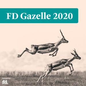 FD Gazelle 2002